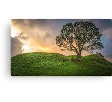 Lone Tree, Lone Sheep Canvas Print