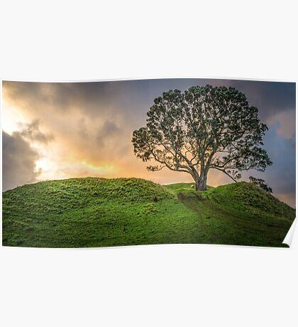 Lone Tree, Lone Sheep Poster