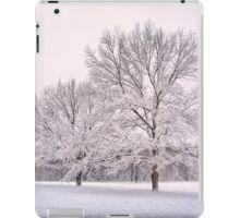 Raising With The Winterfrost iPad Case/Skin