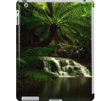 Westmoreland Cascades iPad Case/Skin