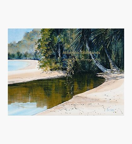 Tidal Creek, Dunk Island Photographic Print