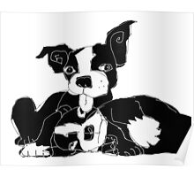 Boston terrier puppies Poster
