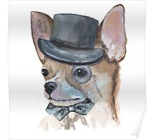 Chihuahua Watercolor  Poster