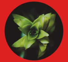 Aptenia succulent plant  One Piece - Short Sleeve