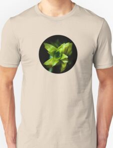 Aptenia succulent plant  Unisex T-Shirt