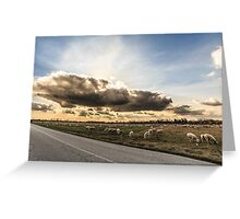 flock of sheeps in the countryside Greeting Card