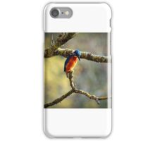 A flash of Blue and he was gone iPhone Case/Skin