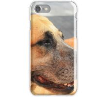 Face of a Stray Brown Dog iPhone Case/Skin