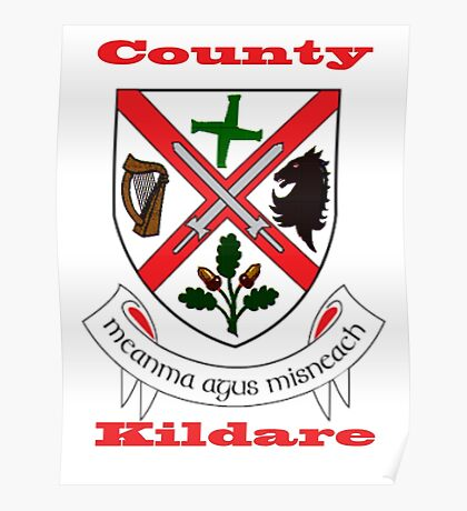 County Kildare Coat of Arms Poster