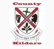 County Kildare Coat of Arms One Piece - Short Sleeve