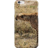 """""""Bow-taut"""" iPhone Case/Skin"""