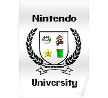 Nintendo University Poster