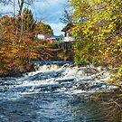 Pocono Stream View by andykazie