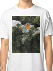 Robin in the winter Classic T-Shirt
