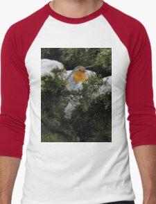 Robin in the winter Men's Baseball ¾ T-Shirt