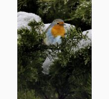 Robin in the winter Unisex T-Shirt