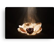 Anemone Clouds Canvas Print
