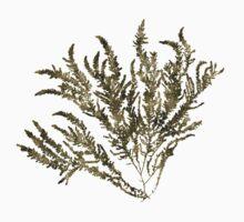Seaweed Plant Art Kids Tee
