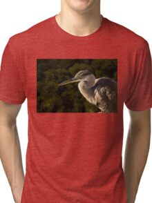 Focused Hunter - a Great Blue Heron Watching for Fish Tri-blend T-Shirt