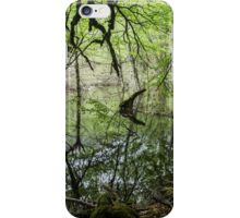 Dense Everglades - Nature Photography iPhone Case/Skin