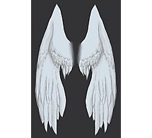 Personal Wings (Bird) Photographic Print
