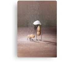 Simple Things - Bad Weather Canvas Print