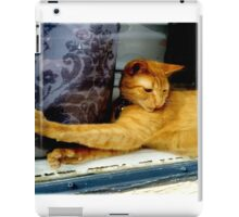 Striking the Right Pose  iPad Case/Skin