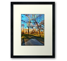 Tee Box View Towards a Shaded Clearing Framed Print