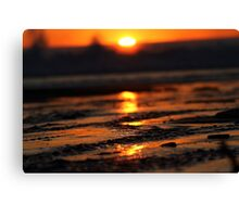 Sands Of Gold Canvas Print
