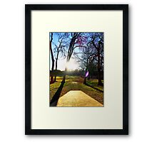 Sunset Between the Trees Framed Print
