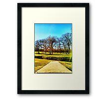 Sunshine Over the Creek Framed Print