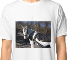 White Horse and Blue Shadows Classic T-Shirt