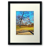 Disc Golf and Blue Skies Framed Print