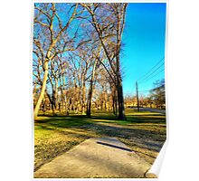 Roadside Pathway Through the Trees Poster