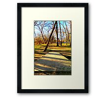 Disc Golfers Ready to Play Framed Print