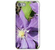 Spring Flower Series 44 iPhone Case/Skin