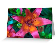 Spring Flower Series 46 Greeting Card