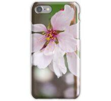 Spring Flower Series 49 iPhone Case/Skin
