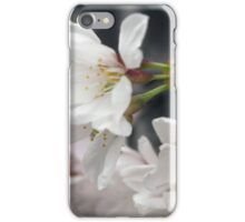 Spring Flower Series 55 iPhone Case/Skin