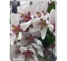 Spring Flower Series 56 iPad Case/Skin