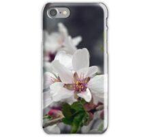 Spring Flower Series 57 iPhone Case/Skin