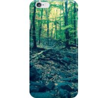 A Voyage Through the Woods iPhone Case/Skin