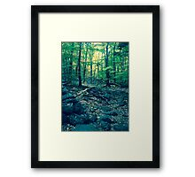 A Voyage Through the Woods Framed Print
