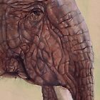 Elephant by Sarah  Mac