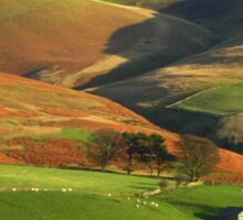 English Hills and Dales Sticker