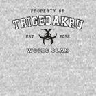 property of trigedakru by ares2424