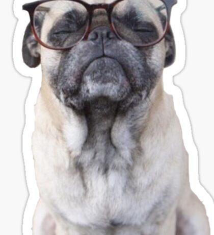 Seeing Eye Pug Sticker