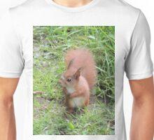 Baby Squirrel. Unisex T-Shirt