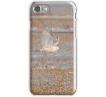 Snowy Owl 2016-13 iPhone Case/Skin