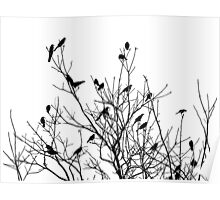 Grackle Tree Poster